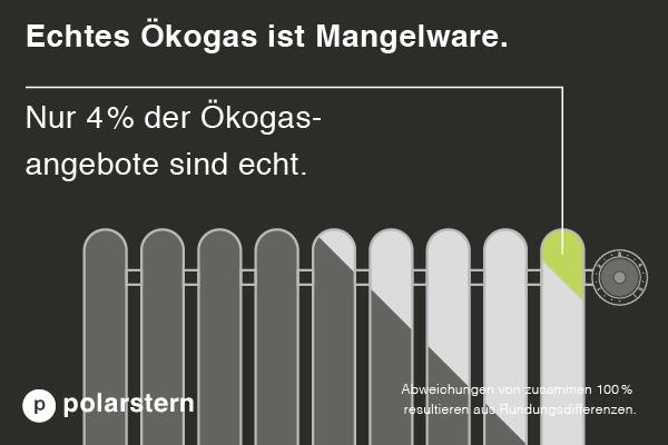 Öko-/Biogas von polarstern