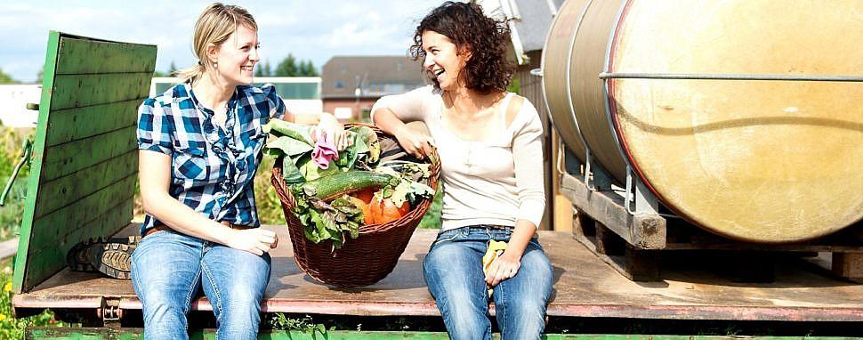 Gemüsegarten mieten mit meine ernte