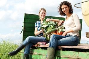Kontakt zu meine ernte - deinen eigenen Gemüsegarten mieten