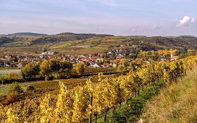 Weingut Familie Frei in Zöbing
