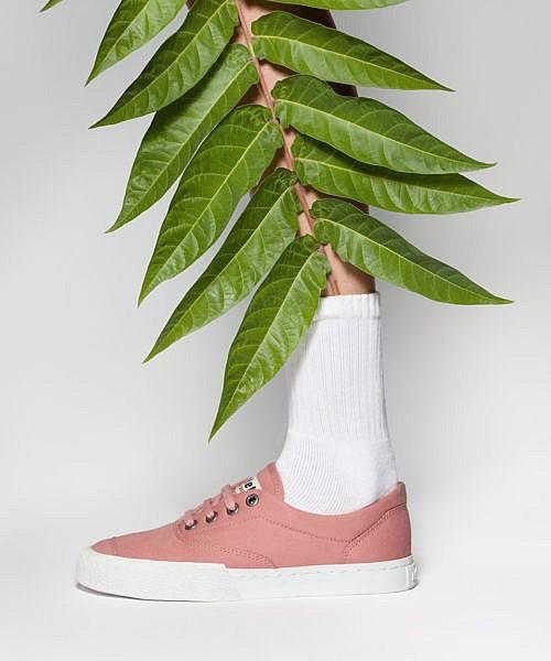 Gewinne vegane Schuhe von Ethletic. Suche dir einen der tollen Sneaker aus