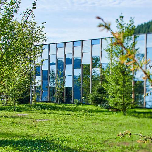 Grüne Erde: nachhaltige Möbel - schau jetzt hinter die Kulissen