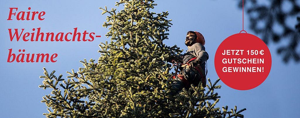 toom Gewinnspiel faire Weihnachtsbäume jetzt Gutschein gewinnen