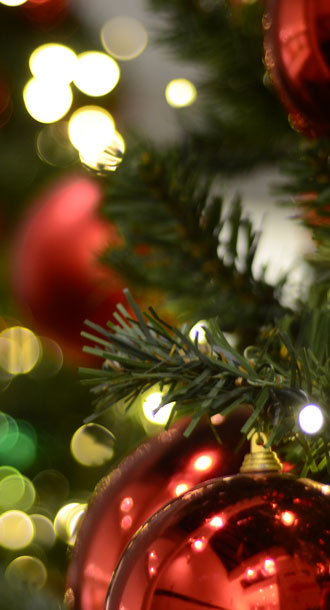 treeday festessen weihnachten alternativen vegetarisch vegan