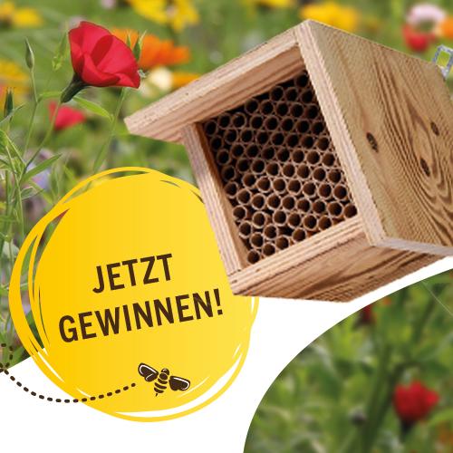 toom Gewinnspiel Insekten Schutz Bienen Insektenhotel Bienenhotel