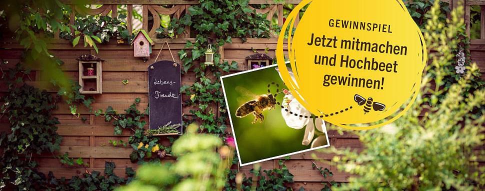 toom gewinnspiel hochbeet gewinnen bienenschutz bienenfreundliche Pflanzen