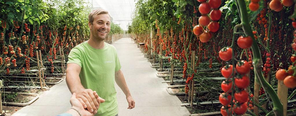 REWE Bio Gemüse CO2 sparen