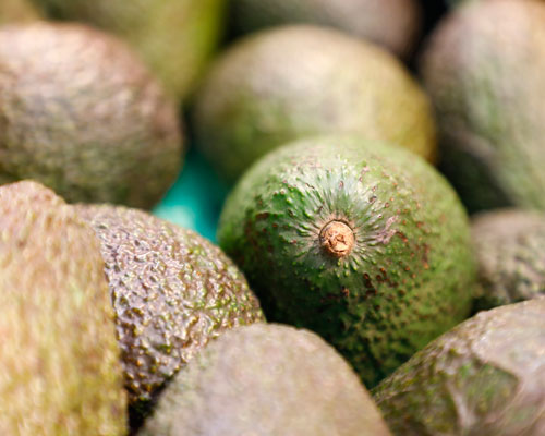 REWE Group Coating Avocado