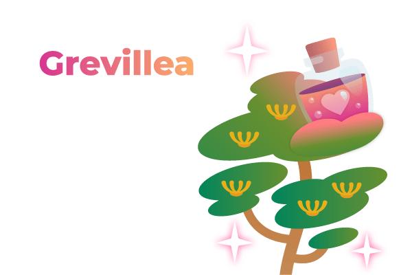 Baum zu Valentinstag - Treedom