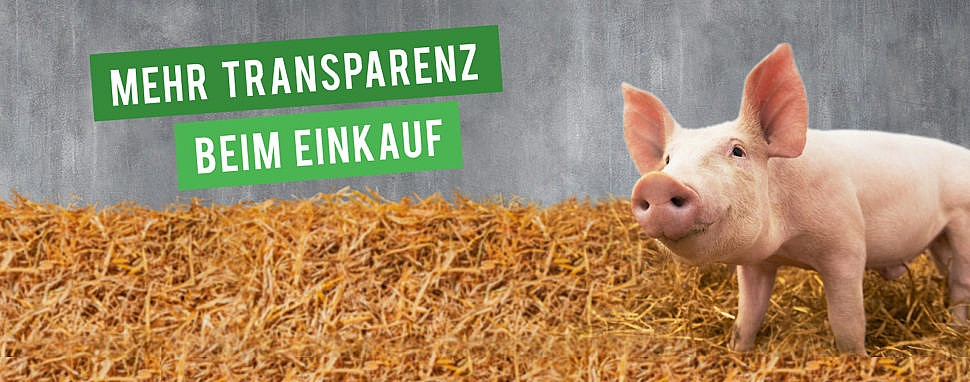 Tierwohl Transparenz bei Kaufland