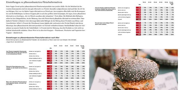 Utopia Studie 2020 Berichtsband, Leseprobe