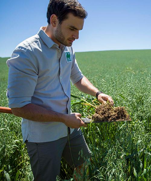 Rewe Bio Produkte, Naturland Qualität