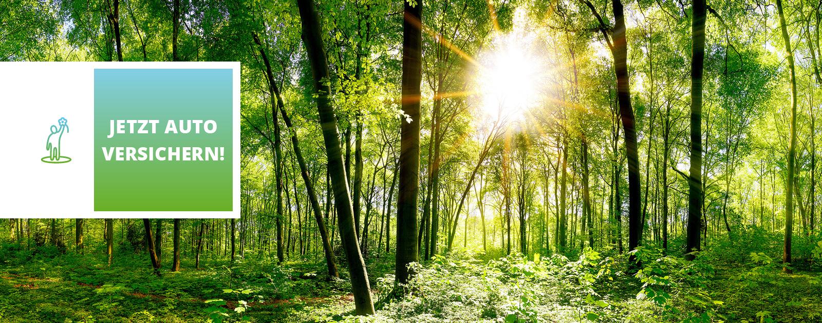 bessergrün Versicherung Baum pflanzen
