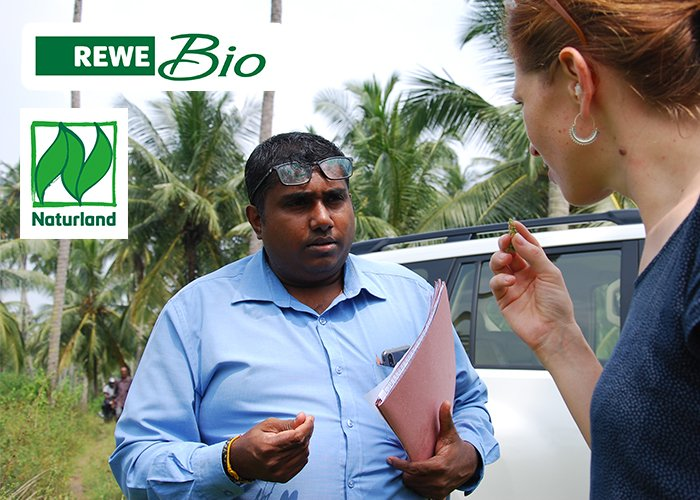 REWE Bio soziale Standards Kokosöl