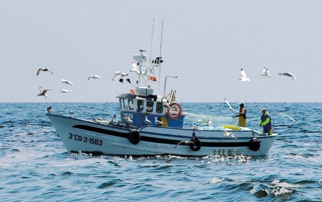 Demeter Pan do Mar Fischerboot Gewinnspiel