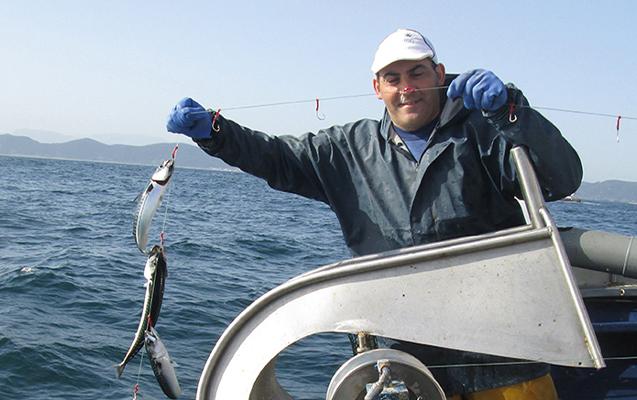 Demeter Pan do Mar Makrelenfang Probierpaket