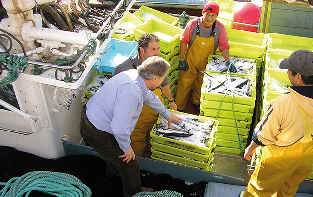 Demeter Pan do Mar Kleinfischer Gewinnspiel Probierpaket
