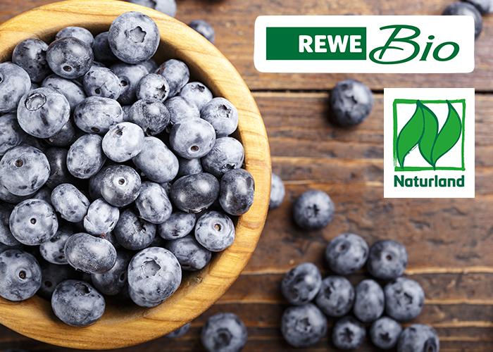 REWE Bio Naturland Joghurt Blaubeeren Früchte statt Aromen